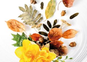 Bucato profumato con essenze Autumn